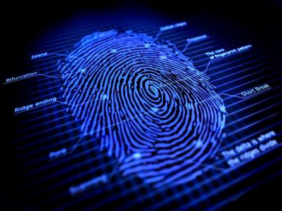 Fingerprint-large-Small